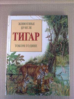 Tigar - Životinje džunle
