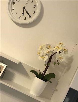 Orhideja veštačka HLADNI PORCELANA