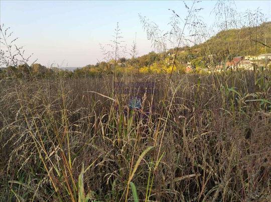 Beočin, Beočin selo, Zemljište, 731m2