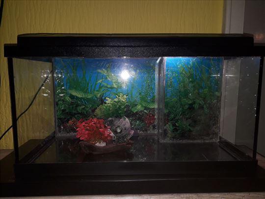 Akvarijum i sva dodatna oprema/full