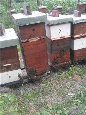 Prodajem košnice sa pčelama