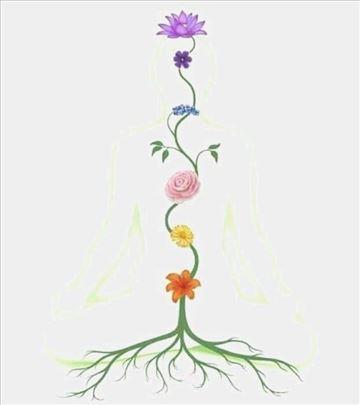 Joga Yoga - zdravljem do radosti