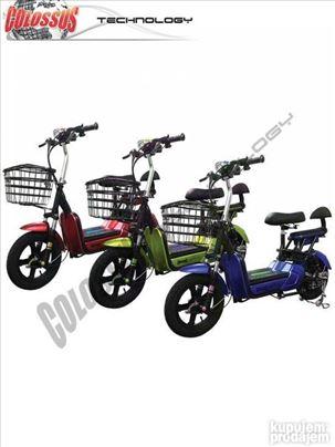 Električni bicikli  CSS 55Q