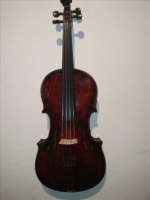 Viola 39