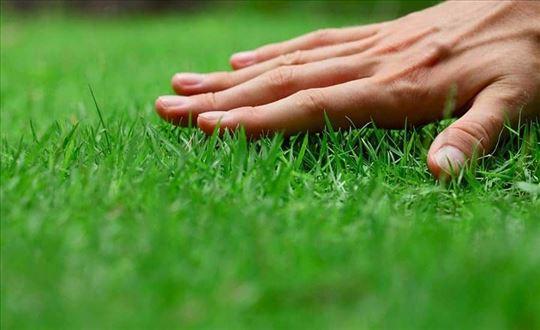 Košenje trave trimerom