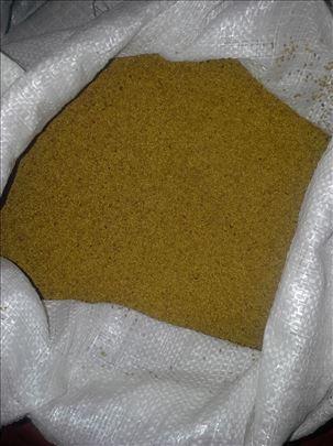 Seme deteline lucerke