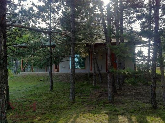Požega,Divčibare, Prelepa vikend kuća okružena bor