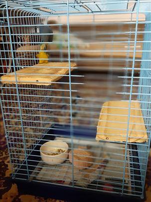 Kavezi za glodare ili papige