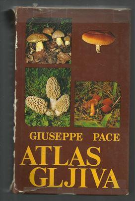 Atlas gljiva - Giuseppe Pace