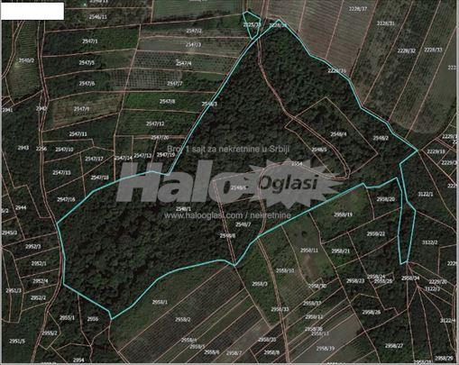 Grocka, gradjevinsko zemljiste 1ha72ara30m2
