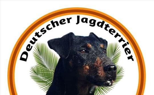 Nemački lovački terijer, štenci