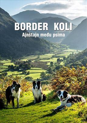 Border koli Ajnstajn medju psima