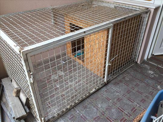 Boks i kućica za psa