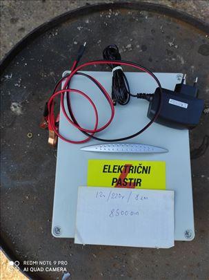 Električni čuvari-čobanice
