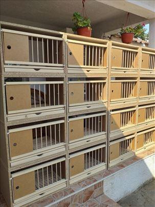 Priplodni boksevi za golubove