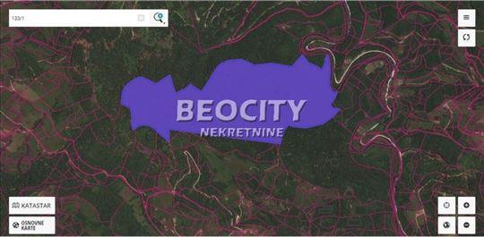 Ivanjica, Vionica, Zemljište pod šumom, 5500a