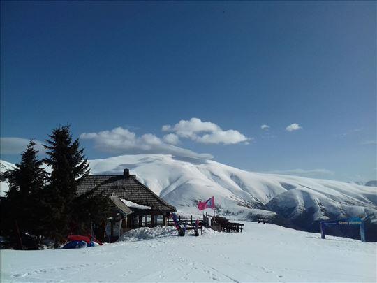 Потрага за скијашицом