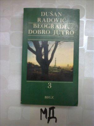 DUSAN RADOVIC - BEOGRADE DOBRO JUTRO - DEO 3