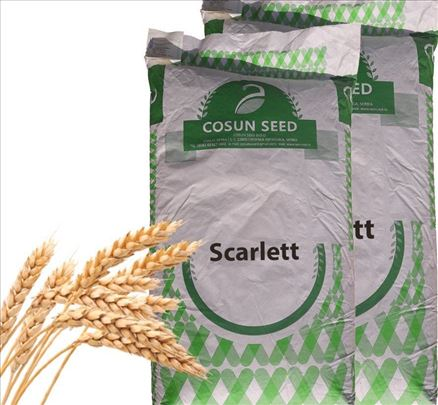 JARI ječam Scarlett (deklarisano seme)