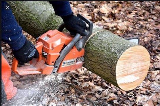 cepanje i rezanje drva