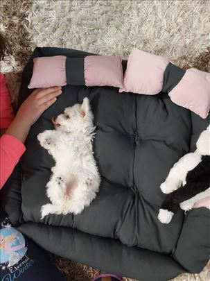 Ležaljka za kućne ljubimce