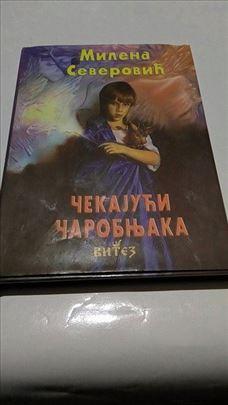Čekajuči čarobnjaka pesme za decu Milena Severovic