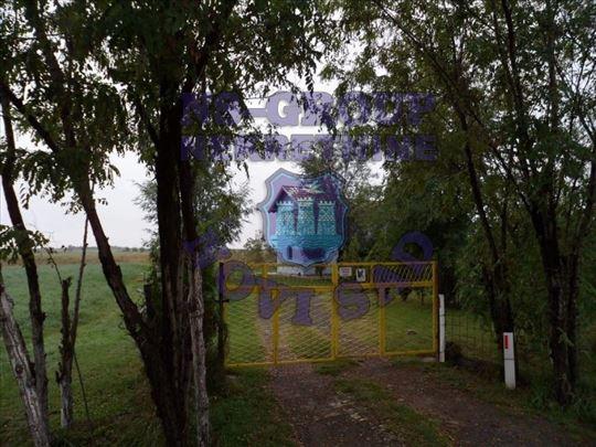 Žabalj, Izlaz iz Žablja, Kuća, 80m2