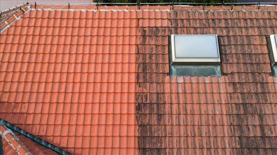 Ciscenje fasada, krovova