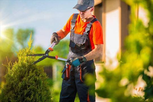 Košenje trave trimerom i kosačicom, krčenje