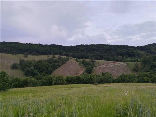 Ravna Gora, Planinica, Mokra Pećina