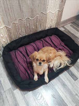 Krevet - jastuk za pse