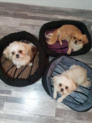 Krevet - jastuk za pse i mace