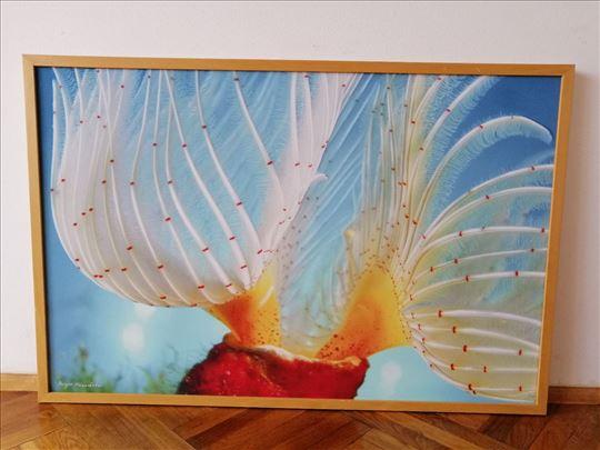 Na prodaju slika sa morskim motivom