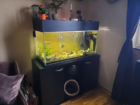 Komplet operema, polica i akvarijum
