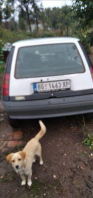 Renault R 5 gti