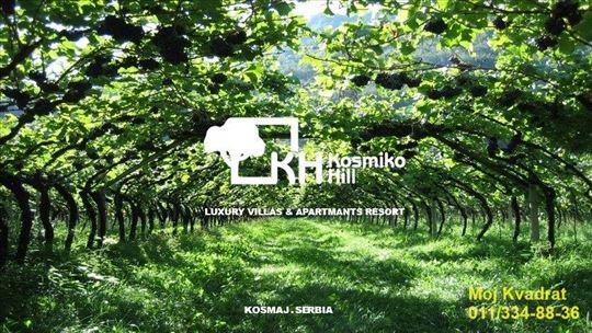 Sopot, Kosmaj - Kosmiko Hill