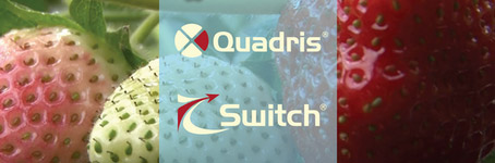 Quadris & Switch