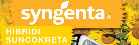 Syngenta - Hibridi suncokreta