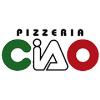 Radnik-ca za šaltersku prodaju pizza