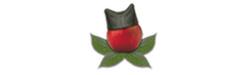 Stubasta jabuka, sadnice