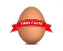 Prodaja i distribucija jaja, Beograd