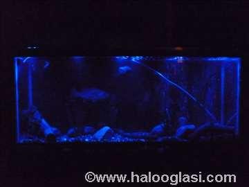 Mesečina za akvarijum 30cm