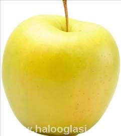 Jabuka zlatni delišes - sertifikovane