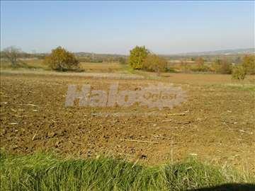 Negotin - polj. zemljište za vinograd i voćnjak