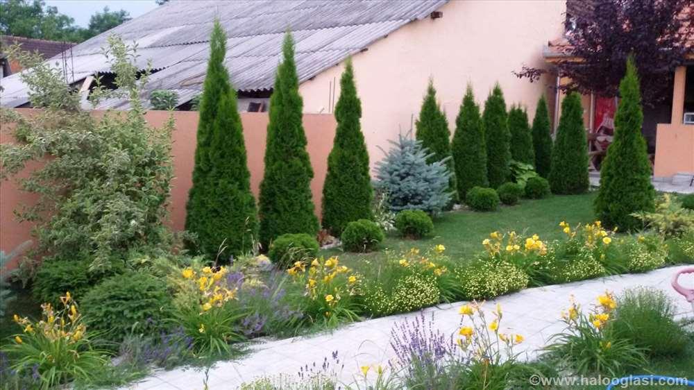 Projektovanje i uređenje vrtova i dvorišta  Halo Oglasi