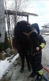 Ponny konjić sa sedlom