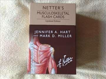 Neterove Flash Cards, mišićnoskeletni sistem