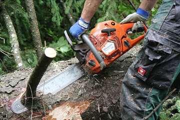 Seča stabala, krčenje