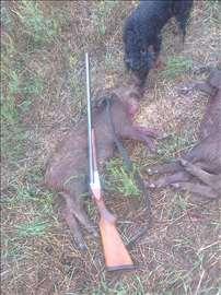 Prodajem lovačku pušku IŽ 58 kal.16